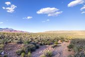 stock photo of puffy  - Scenic landscape in Red Rock Canyon desert of Las Vegas with blue sky and puffy white clouds - JPG