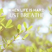 Inspiration Quote :  When Life Is Hard,just Breathe On Vintage Filter Green Leaf Background ,motiv poster