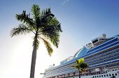 stock photo of cruise ship caribbean  - Palm Tree and cruise ship with sun shinning in background - JPG