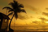 picture of beach sunset  - Beautiful caribbean beach sunset in Dominican Republic - JPG