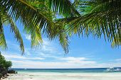 image of tropical island  - Beautiful Alona beach at Panglao - JPG