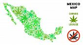 Royalty Free Marijuana Mexico Map Mosaic Of Weed Leaves. Template For Narcotic Addiction Campaign Ag poster