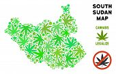 Royalty Free Cannabis South Sudan Map Collage Of Weed Leaves. Template For Narcotic Addiction Campai poster
