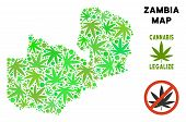 Royalty Free Cannabis Zambia Map Composition Of Weed Leaves. Template For Narcotic Addiction Campaig poster