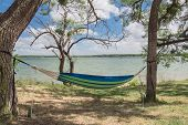 Lakeside Hammock Hanging Between Trees Sunny Day poster