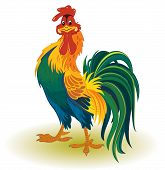 stock photo of fluffing  - Funny cartoon colorful rooster over white background - JPG