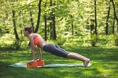 Athletic Lady Is Doing Fitness Among Marvelous Park. She Is Staying In Plank And Using Yoga Blocks F poster