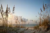 stock photo of sabbatical  - Sand dune and ocean scene at Gulf Coast - JPG