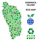 Постер, плакат: Ecology Dominica Island Map Collage Of Herbal Leaves In Green Color Shades Ecological Environment V