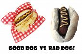 Hot Dog. Good Dog vs Bad Dog. Good and bad hot dogs isolated on white. room for text.  poster