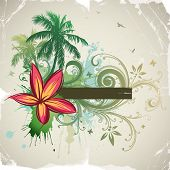 picture of hawaiian flower  - Palms - JPG