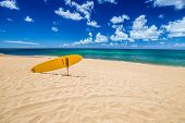 Serf Rescue In The Popular Sunset Beach In North Shore, Oahu, Hawaii In Summer. Sunset Beach Is Home poster