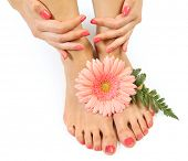 foto of pedicure  - Beautiful pink manicure and pedicure - JPG