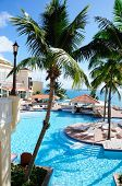 picture of conquistadors  - A pool overlooking the warm waters of the Caribbean found at El Conquistador in Puerto Rico - JPG