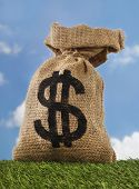stock photo of sack dollar  - Burlap sack with dollar sign money bag on field - JPG
