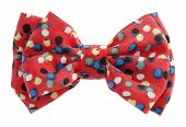 stock photo of hair bow  - Dotted bow tie red with multicolor spots - JPG