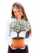 stock photo of nurture  - Business woman nurturing a money tree  - JPG