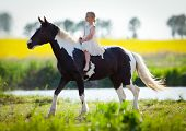 stock photo of paint horse  - Child riding a horse in meadow in spring - JPG