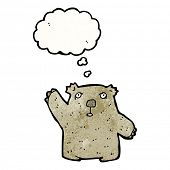 foto of wombat  - cartoon wombat - JPG