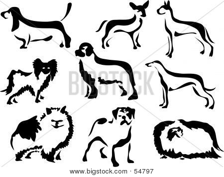 Wobbly Brush Dogs poster
