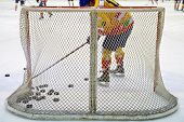 pic of bandy stick  - ice hockey net with puck on ice - JPG