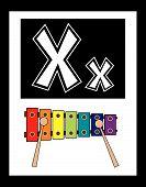 pic of nouns  - Flash Card Letter X nouns - JPG
