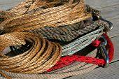 pic of buckaroo  - rope - JPG