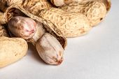 picture of groundnut  - An opened groundnut reviewing its inside content - JPG