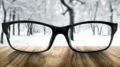 image of ophthalmology  - Clear forest in glasses on the background of blurred forest - JPG