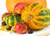 pic of indian apple  - apples pumpkins corn on a wooden board - JPG