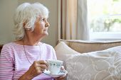 pic of only mature adults  - A mature woman  holding a cup and saucer while looking out the window with copyspace - JPG