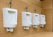 picture of urine  - White urinals with ceramic tile on wall - JPG