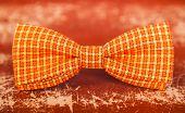 stock photo of bow tie hair  - orange bow tie with white stripes - JPG