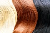 stock photo of hair streaks  - Hair Colors Palette - JPG