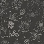 picture of calla  - Hand drawing seamless pattern of flowers - JPG
