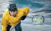 pic of ice hockey goal  - Ice hockey player on the ice - JPG