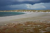 picture of falklands  - Curved sandy beach of Yorke Bay in the Falkland Islands - JPG