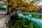 foto of crystal clear  - Beautiful Fall Foliage Surrounding the Crystal Clear Emerald Frio River Texas.