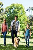 foto of dog park  - Happy family walking their dog in the park on a sunny day - JPG