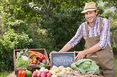 picture of farmer  - Farmer selling organic veg at market on a sunny day - JPG