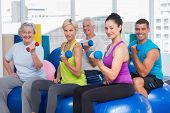 stock photo of senior class  - Portrait of people on exercise balls while working out with dumbbells in gym class - JPG