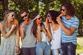 image of lolli  - Hipster friends enjoying ice lollies on a summers day - JPG