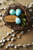 image of pussy-willows  - Bird eggs in nest and pussy willow flowers branches on wooden background - JPG