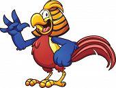 picture of pheasant  - Cartoon golden pheasant - JPG