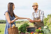 foto of farmer  - Farmer selling his organic produce on a sunny day - JPG