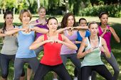 image of squatting  - Fitness group squatting in park on a sunny day - JPG