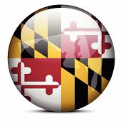 picture of maryland  - Vector Image  - JPG