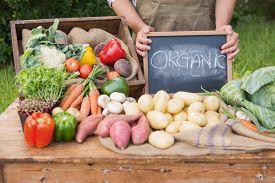 pic of farmer  - Farmer selling organic veg at market on a sunny day - JPG