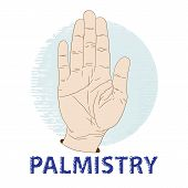 pic of palmistry  - Hand palm - JPG