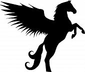 stock photo of winged-horse  - standing up on its hind legs horse  - JPG